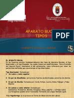 TIPOS APARATO BUCAL 3