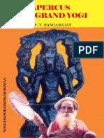 APERCUS D'UN GRAND YOGI - Yogi Ramsuratkumar -par Sadhu Rangarajan