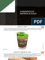 FUNDAMENTOS 222(F1)