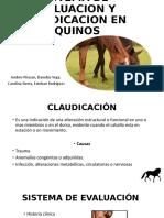 SISTEMA DE EVALUACION Y CLAUDICACION EN EQUINOS final.pptx