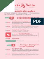planejamento-aulas-mentoria-lives-v02