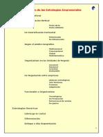 tipologia_estrategias