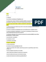 PREGUNTAS FÁCILES