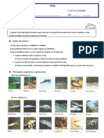 Ficha Informativa_pesca.doc