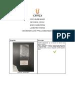 Botánica general grupo 1-Cielo Escudero_3304550_0.pdf