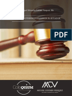 Miguel Costain - Grantias Jurisdiccionales.pdf