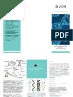 folleto biologia y quimica.pptx