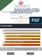 Caracterización In Situ de minerales auríferos .pdf