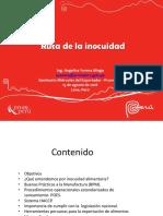 Ruta de la inocuidad.pdf