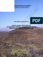 informe geolgico distrito loma las mulas 2008_pub