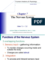 Nervous Sys. 7