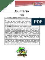 01 Sumário - PETE.pdf