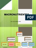 MACRONUTRIENTES - ENFERMERIA - 2019