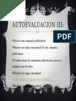 AUTOEVALUACION III
