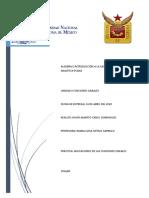 Practica_Aplicaciones_de_las_funciones_lineales (1)