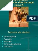 natura_statica