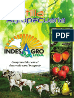 Revista Indesagro LTDA