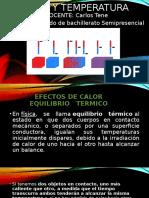 EQUILIBRIO TERMICO.pptx