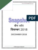 Snap Shot Dec 2018-1-1-unlocked.pdf
