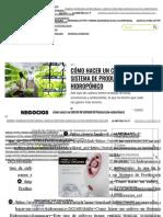 Cómo hacer un cultivo en Sistema de Producción Hidropónico