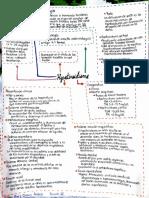hipotiroidismo Patiño Perez Diana Andrea.pdf