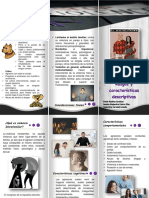 folleto violencia 1