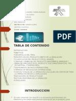 costos simulador  ALARIO.pptx