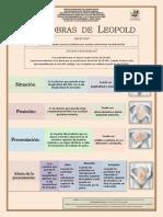 CARTEL MANIOBRAS DE LEOPOLD