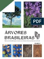 Árvores Brasileiras - Manual De Identificação E Cultivo De Plantas Arbóreas Nativas Do Brasil - Vol. 1