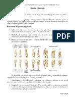 sistema_digestrio.pdf