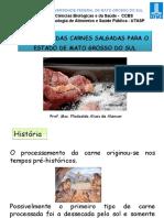PotencialCarnesSalgadas_FlodoaldoAlencar.pdf