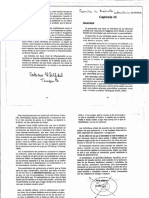 Familia en tránsito. Cap. 3 Identidad.pdf