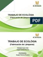 EXPO ECOLOGIA (LAMPARAS)