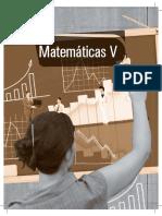 Matematicas v 11B