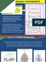 1_5028506899377553599.pdf