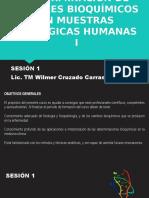 DETERMINACIÓN DE PERFILES BIOQUÍMICOS EN MUESTRAS BIOLÓGICAS HUMANAS