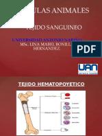 Copia de Clase # 3. TEJIDO HEMATOPOYETICO