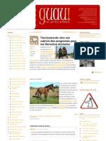GUAU-caballosolvidadosdetucuman