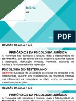 revisaoav1 1 a 5 psicologia juridica