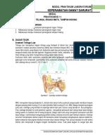 Modul  IRIGASI TELINGA MATA DAN TAMPON.pdf