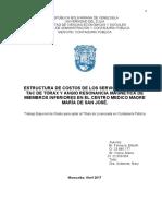 TESIS COMPLETA.docx