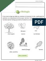 CIENCIA Y TECNOLOGIA -  CLASE VIRTUAL