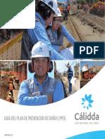 Guia PPD.pdf