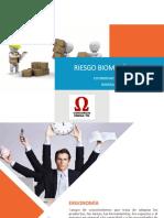 Riesgo Biomécanico.pdf