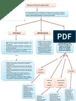 """Mapa conceptual """"Principios básicos de las BPA"""".docx"""