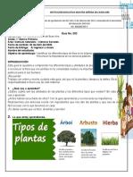 Guía Ciencias integradas N°2. Grado 1.docx