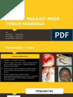 DAMPAK PARASIT PADA TUBUH MANUSIA