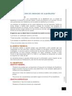 Informe Ladrillo.docx