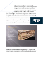patologia por granos argorifilicos.docx