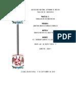 AAP_G06_P03_MORALES_MORALES_JONATHAN_MAURICIO.docx